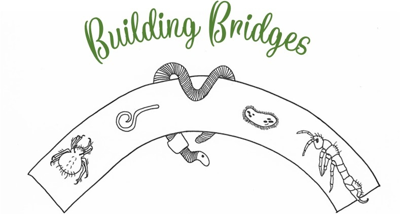 Logo Building Bridges