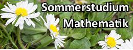 Sommerstudium der Mathematik