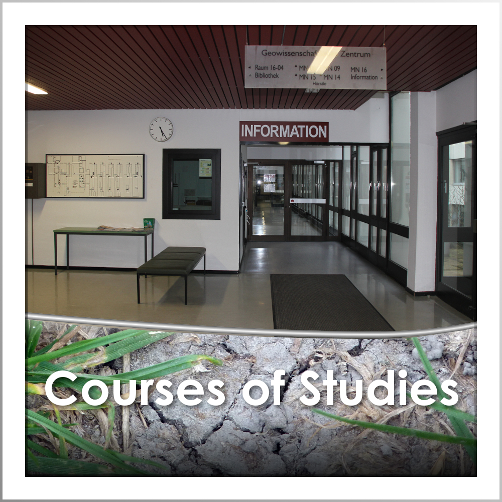 Link to the different Courses of Studies