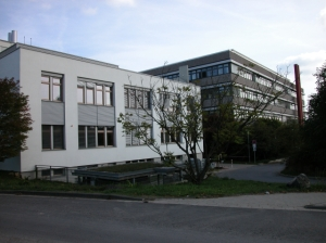Institute for Microbiology and Genetics