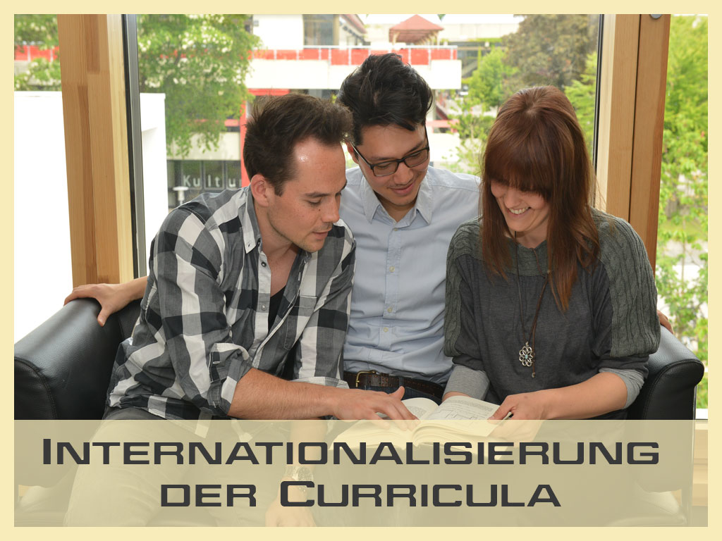 Internationalisierung der Curricula