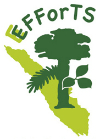 Efforts logo