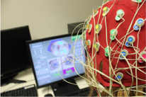 EEG Experiment NWG Psycholinguistics