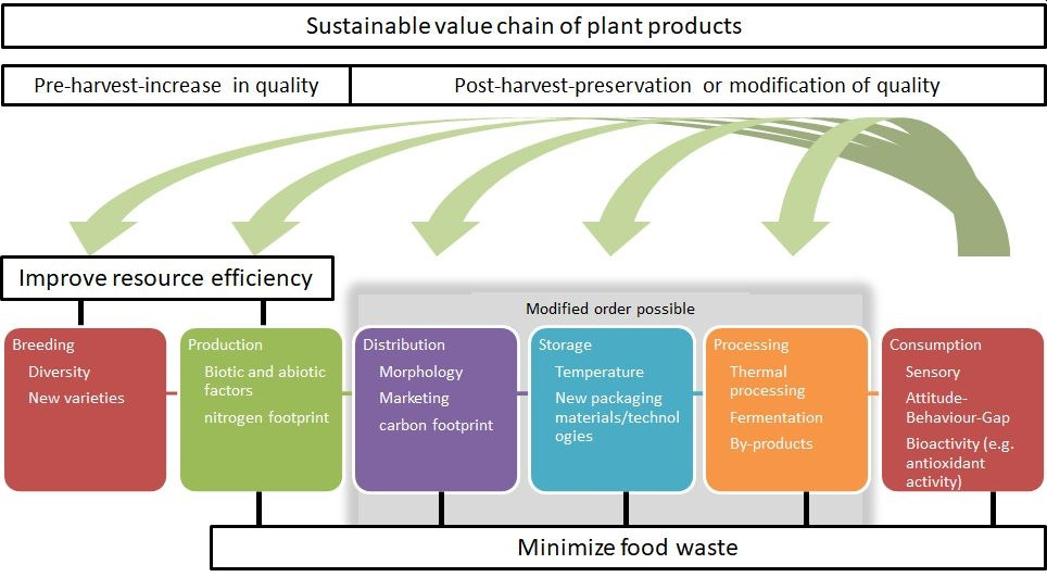 Sustainable value chain