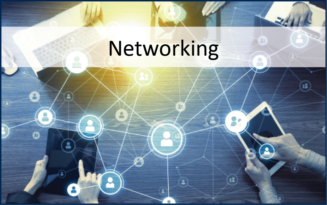 CAREER-Networking