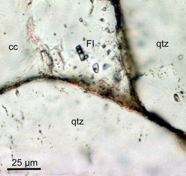 Fluid-rock-fluid inclusions-Abb1